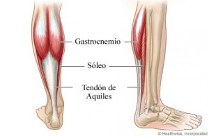 tendinitis-aquilea-01