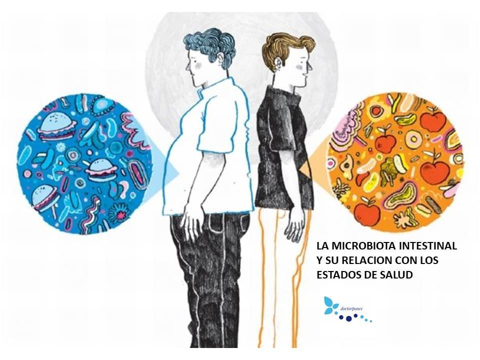 LA MICROBIOTA INTESTINAL Y SU RELACION CON LOS ESTADOS DE SALUD